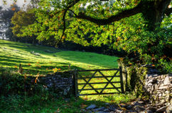 Country scene with farm gate Royalty Free Stock Photo