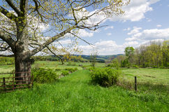 Country Scene, Hudson Valley, NY. Stock Image