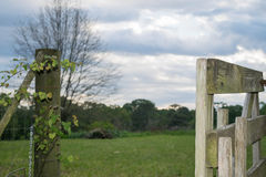Country scene-Open gate on farm on summers afternoon Stock Image