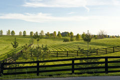 Country Scenery Royalty Free Stock Images