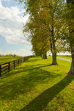 Country scenery on beginning of autumn season Stock Images
