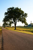 Country Scenery at Dawn. A summer country road scene with farming landscape and trees stock photo