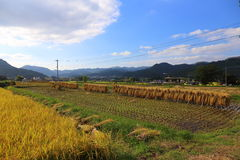 Country scenery. It is a country scenery of Japan Royalty Free Stock Photography