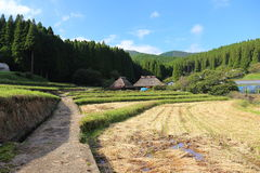Country scenery. It is a country scenery of Japan Stock Image