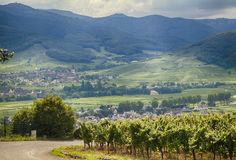 Country side of Alsace region Royalty Free Stock Photo