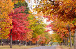 Country side in Australia. Country side road in Autumn near melbourne australia Stock Photo