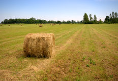 Country Side Blues Royalty Free Stock Photos