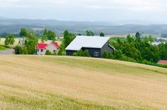 Country side in Hokaido Japan. Country side landscape: farmland in Hokkaido Japan Stock Photos