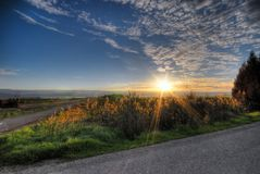 Country side sunrise. Raise of light coming from the rising sun at country side Royalty Free Stock Photography