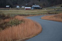 Country side view Stock Photography
