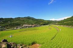 Country side view of Kumamoto Prefecture. At Japan Stock Photography