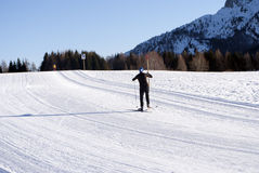 Country skiing Royalty Free Stock Image