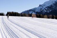 Country skiing. Wintry landscape scenery with modified cross country skiing way. Bondone mountain in Trentino. Italy Stock Photo