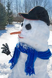 Country Snowman Royalty Free Stock Images