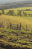 Country stile. A Country stile in field in the countryside Stock Images