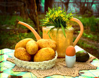 Country stiled outdoor still life with watering can potato avoca Stock Images