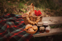 Country still life. Royalty Free Stock Image