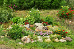 Country stone garden with geraniums Stock Photo