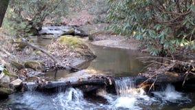 Country Stream Stock Photo
