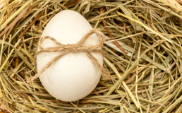 Country style easter egg in hay with bowknot Royalty Free Stock Image