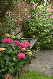 Country-style garden with bench Royalty Free Stock Image