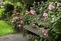 Country-style garden with bench Royalty Free Stock Images