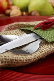 Country style rustic Thanksgiving table setting Royalty Free Stock Photography