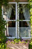 Country style window with flowers and curtains Royalty Free Stock Photo