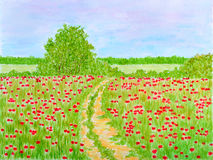 Country Summer Flowers Meadow Landscape. Country Summer Flowers Meadow or Field Landscape Watercolor Hand Drawn and Painted Stock Photos