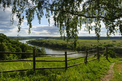 Country summer landscape. Rural country summer landscape with river, field, forest, old wood hedge, with view through overhanging birch branches in cloudy sunny Royalty Free Stock Image