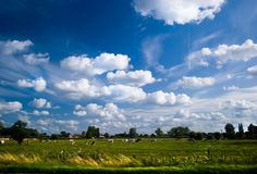 Country Summer Sky Royalty Free Stock Images