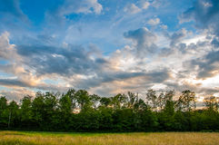 Country summer sunset Stock Image