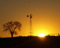 Country Sunrise. With a windmill and tree silhouette Royalty Free Stock Images