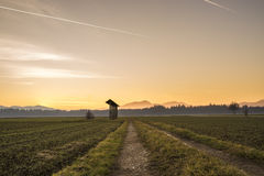 Country sunrise over agricultural fields Stock Photos