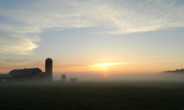 Country Sunrise. On a peaceful summer morning in the country, fog is lying low, blanketing the fields, as the  sun is just about to rise over the horizon Royalty Free Stock Image