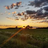 Country sunset royalty free stock images