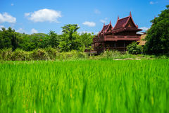 Country of Thailand Royalty Free Stock Photos