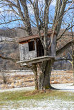 Country Tree house in the early Spring. Royalty Free Stock Photos