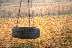 Country Tree Swing Royalty Free Stock Images
