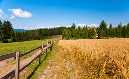 Country view with fence Stock Image