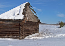 Old barn with broken roof under snow in winter tiime Royalty Free Stock Image