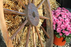 Country Wagon Wheel Stock Image