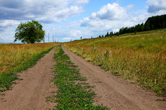 Country walk. Summer landscape with country road Stock Photography