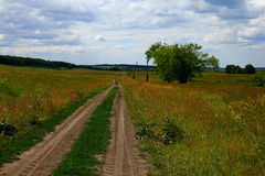Country walk. Summer landscape with country road Stock Images