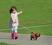 Country walkies Stock Photography