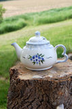 Country White Tea Pot Royalty Free Stock Images