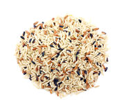 Country wild rice blend Stock Images