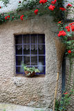 Country window whit iron bars and climbing red roses outside Stock Photo