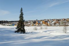 Country Winter Landscape With Solitary Fir Tree Royalty Free Stock Photos