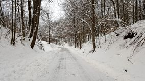 Country winter road covered with layer of snow. And surrounded with snow covered grass and large trees without leaves on cold winter day Royalty Free Stock Photo